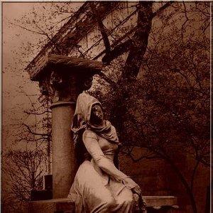 Image for 'Chronique Nocturne'