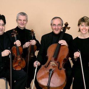 Bild für 'Bamberg String Orchestra'