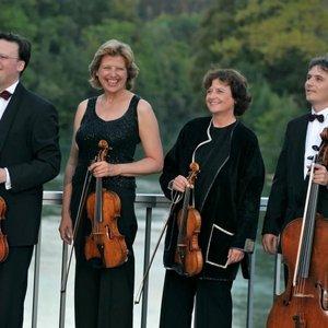 Image for 'Verdi Quartett'