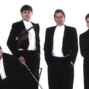 Image for 'Medici String Quartet'