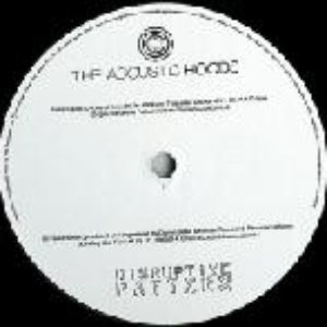 Image for 'The Acoustic Hoods'