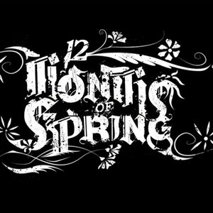 Image for '12 Months of Spring'