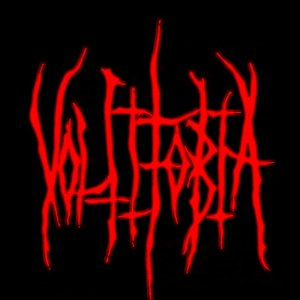 Image for 'Voltifobia'
