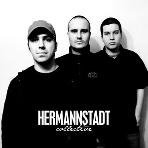 Image for 'Hermannstadt Collective'