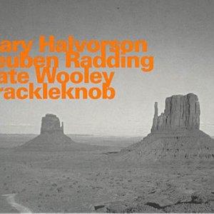 Image for 'Mary Halvorson/Reuben Radding/Nate Wooley'