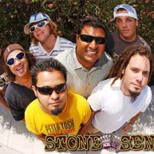 Image for 'Stone Senses'
