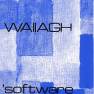 Image for 'Wallagh'