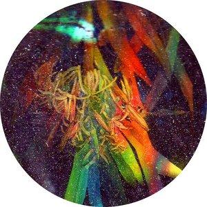 Image for 'Veux'