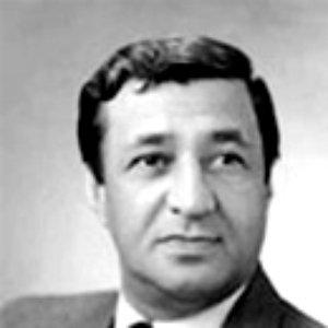 Image for 'Arif Məlikov'
