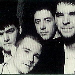 Image for 'Bradford'