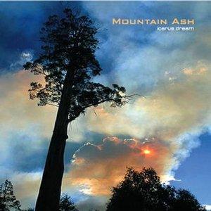Image for 'MOUNTAIN ASH'