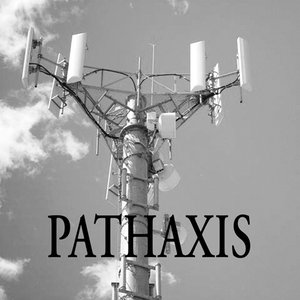Image for 'PATHAXIS'