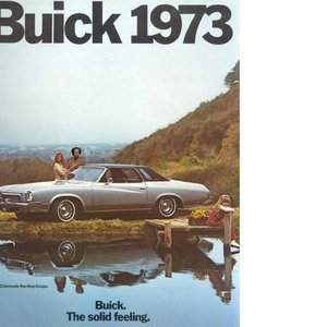 Image for 'da buick'