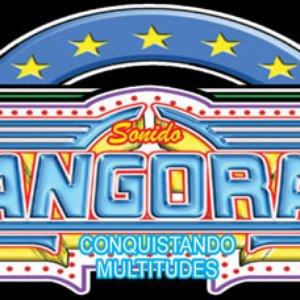 Image for 'Super Sonido Changorama'