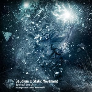 Image for 'Gaudium & Static Movement'