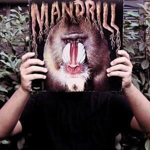 Image for 'DJ Primate'