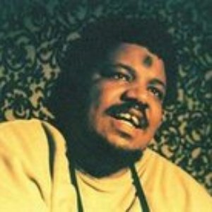 Image for 'Wesley Willis & The Dragnews'