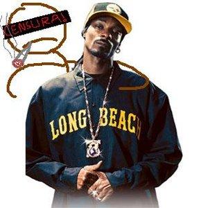 Image for 'Snoop Dogg feat. Bunds Loko da Silva Vecetrumgofred & Vagaróvski Orchestra 3000'