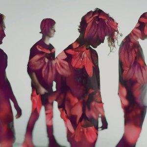 Bild för 'Flor'