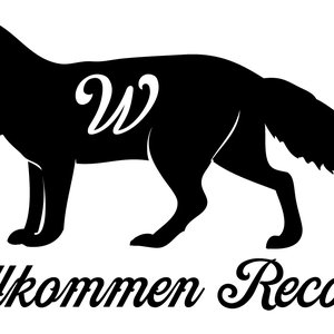 Image for 'Willkommen Collective'
