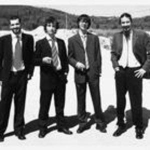 Image for 'Agrupamento Musical Lauro Palma'