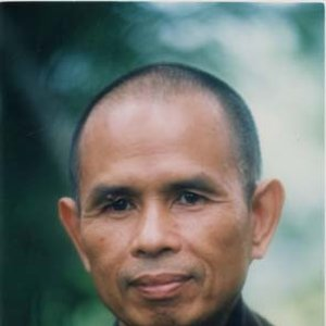 Image for 'Thich Nhat Hanh'