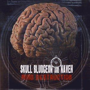 Immagine per 'Skull Bludgeon & Naveh'