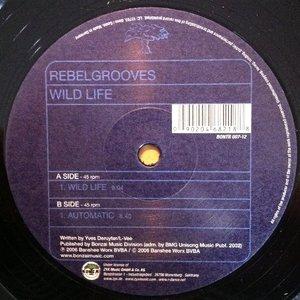 Image for 'Rebelgrooves'