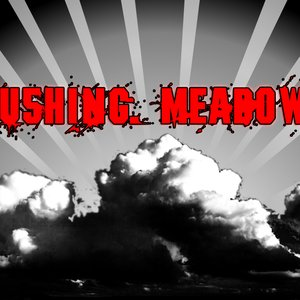 Image for 'Flushing Meadows'