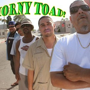 Image for 'Horny Toad'