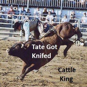 Immagine per 'Tate Got Knifed'