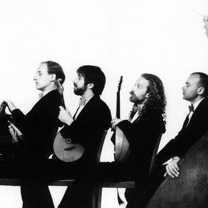 Image for 'The Terem Quartet'