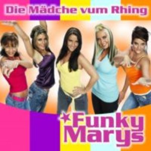 Image for 'Funky Marys'