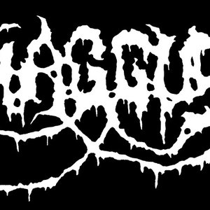 Image for 'Haggus'