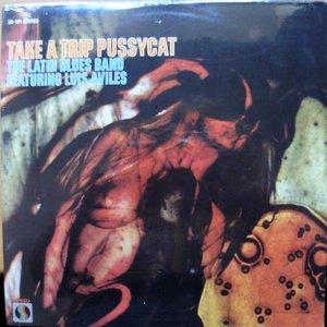 Image for 'latin blues band'