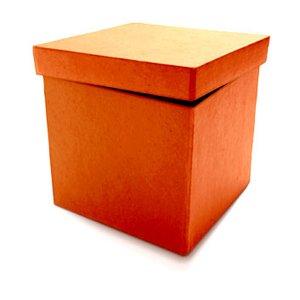 Image for 'Orange Box Day'