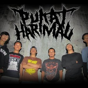 Image for 'Pukat Harimau'