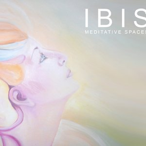 Image for 'Ibis Music'