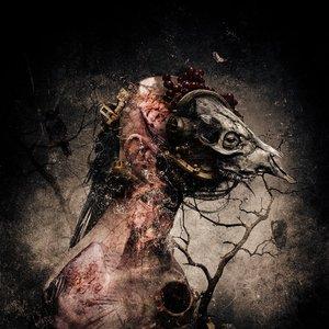 Image for 'Solium Fatalis'