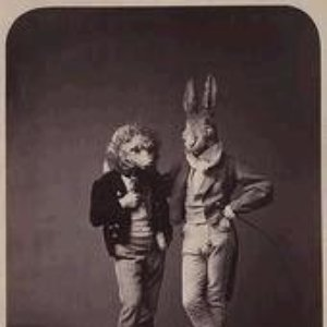Image for 'The Hare and the Moon'