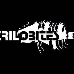 Image pour 'Trilobites'