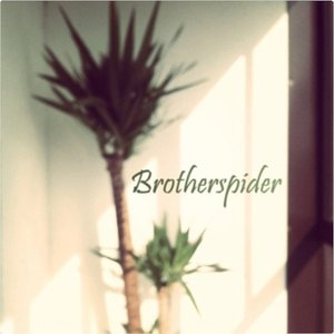 Image for 'Brotherspider'