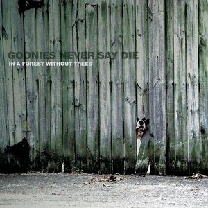 Image for 'Goonies Never Say Die'