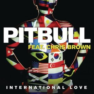 Image for 'Pitbull feat. Chris Brown'