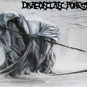Image for 'Draconian Forest'
