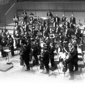 Imagen de 'The World Festival Symphony Orchestra'