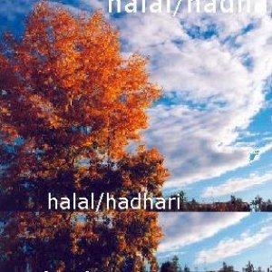 Image for 'halal/hadhari'