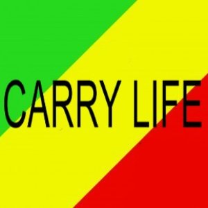 Image for 'Carry Life'