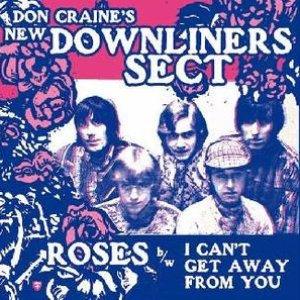 Image for 'Don Craine's New Downliners Sect'