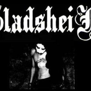 Image for 'Gladsheim'